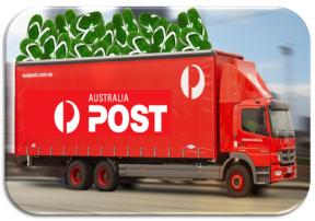 post truck success v2